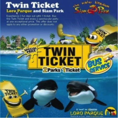 twin-ticket